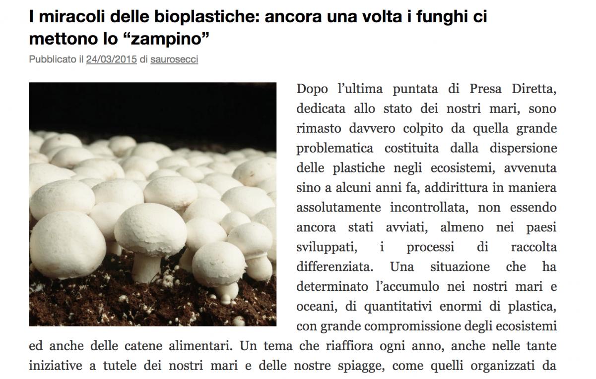 L'Ippocampo – press article