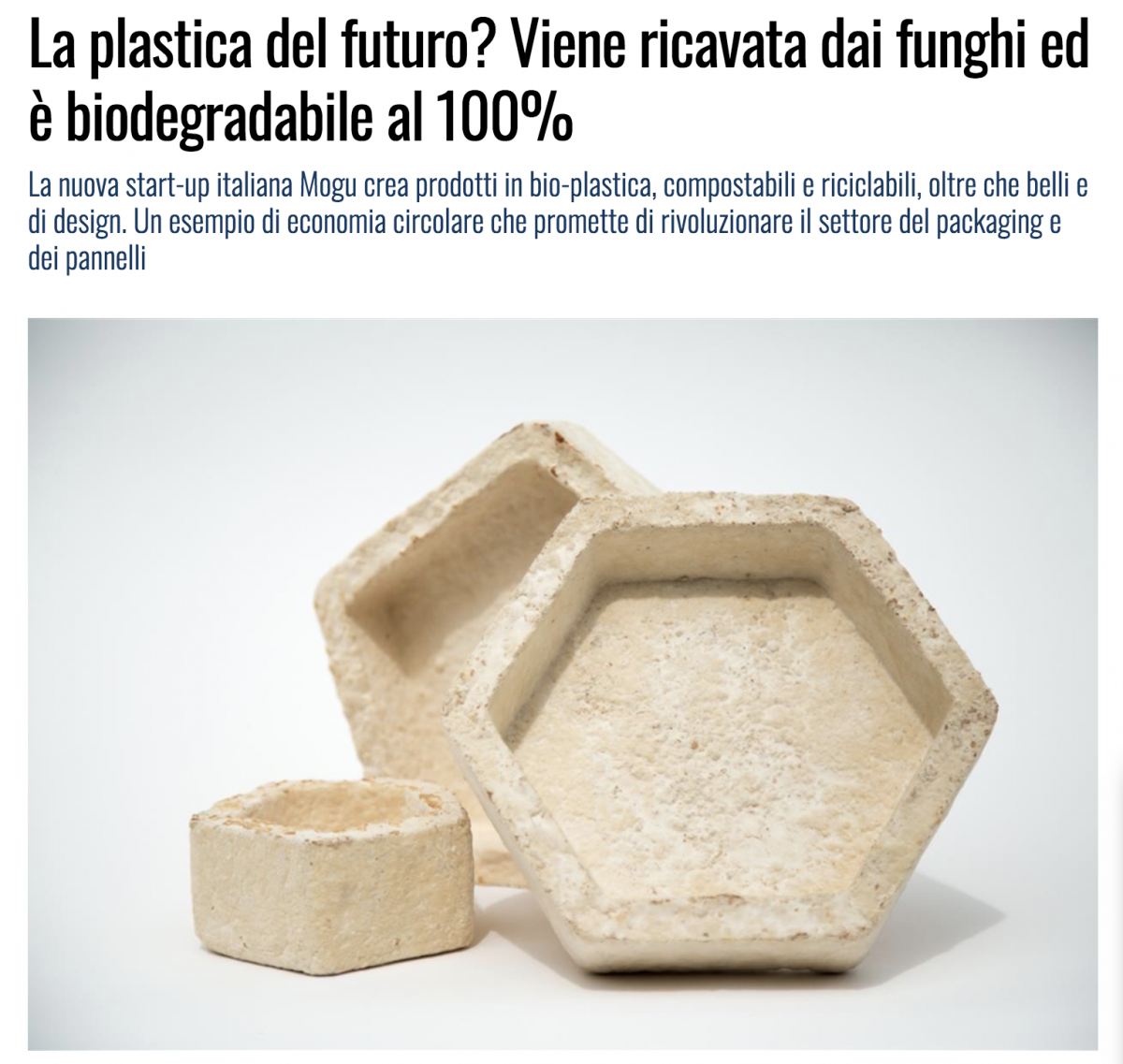 LINKIESTA – press article