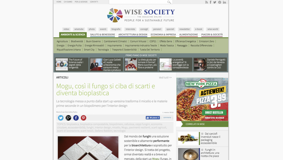 Wise Society – press article