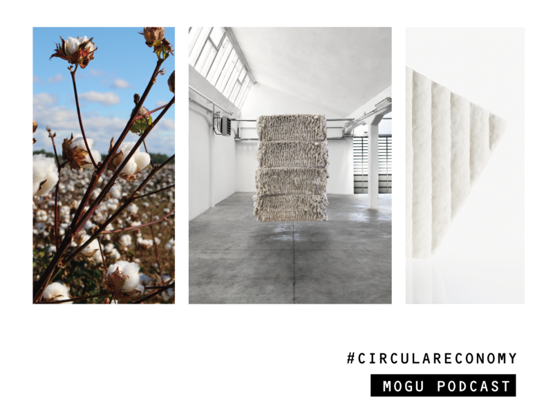 // MOGU – DESIGN DRIVEN BIOFABRICATION COMPANY // Circular Economy Podcast Interview with Stefano Babbini (CEO)