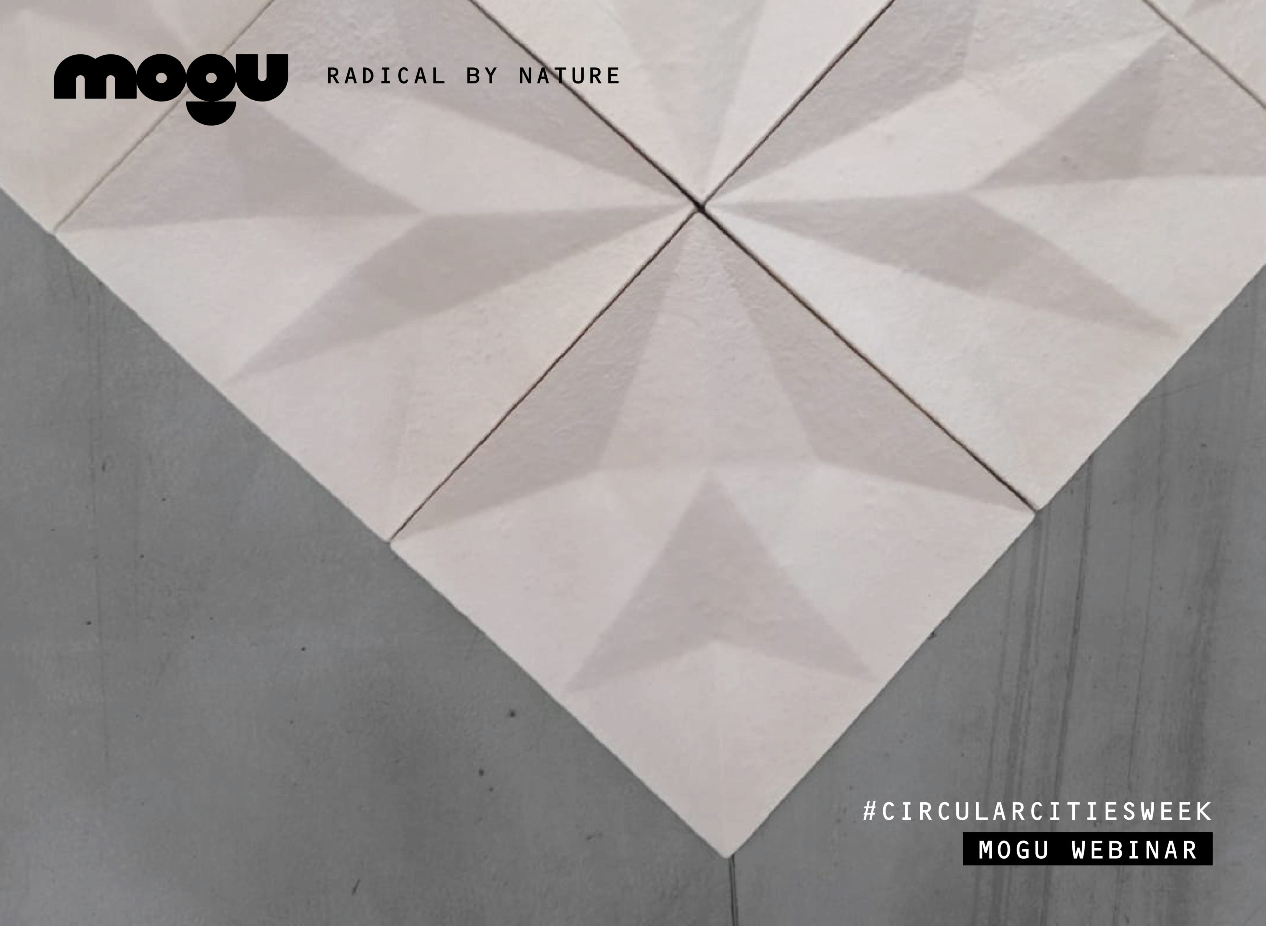 MOGU AGENDA // BUILDING MATERIALS FROM THE BIOSPHERE // WEBINAR