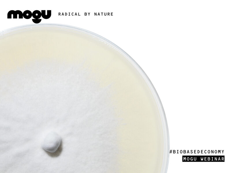 MOGU AGENDA // THE BIOBASED ECONOMY FOR A BETTER FUTURE // WEBINAR