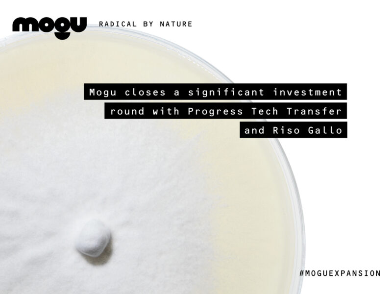 INVESTMENT ROUND // PRESS RELEASE – Mogu closes investment round of € 1.1 million